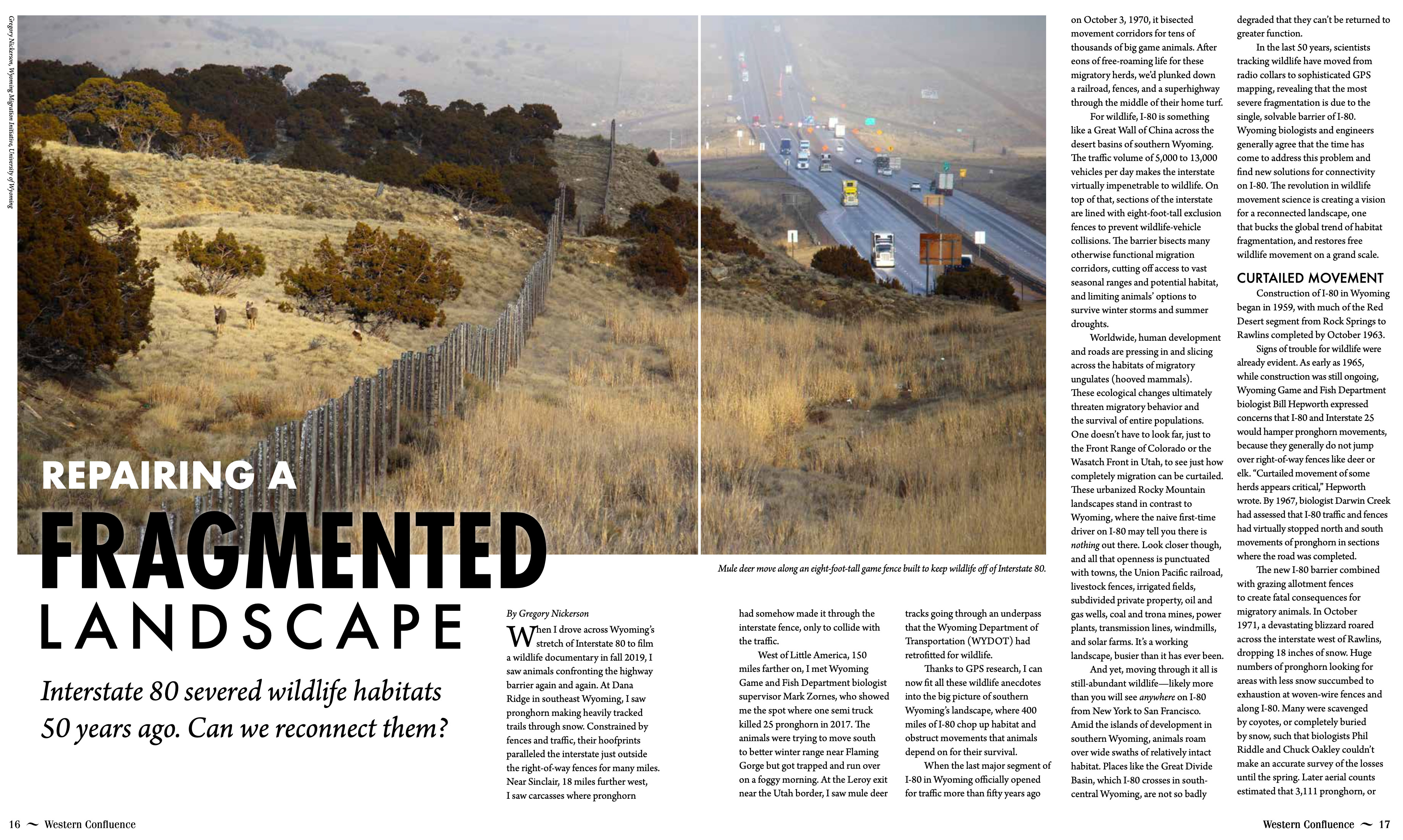 Western Confluence article thumbnail